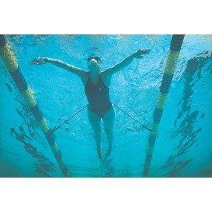 StretchCordz Stationary Swim Trainer, Green