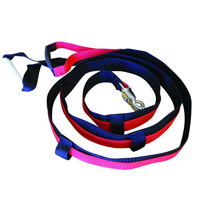 Prism Fitness Quick Release Leash