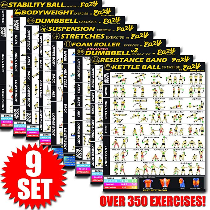 Eazy How To Multi Pack Bundle Exercise Workout Poster BIG 28 x 20